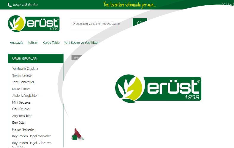 Erüst Online